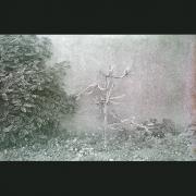 NegFile1065_0015_telAviv6