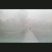 NegFile1077_0005_Fog3