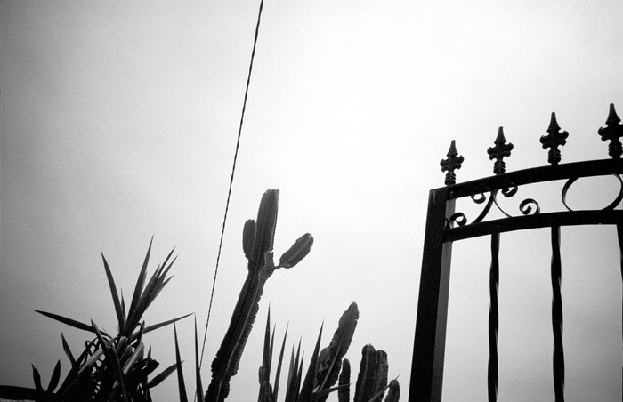 2-gate-large-aviv-yaron-photography