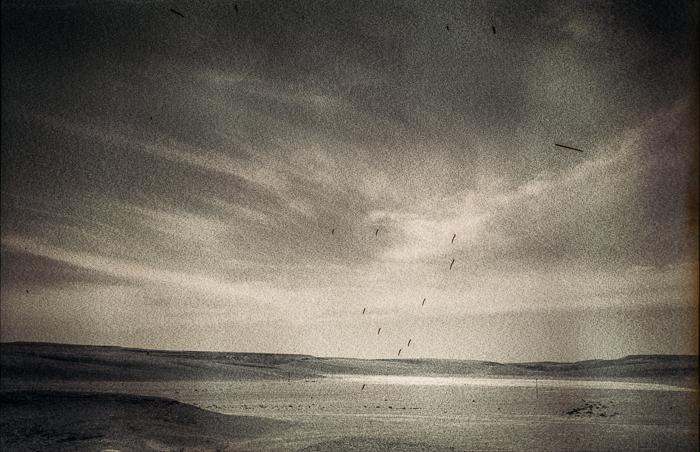 desert-negfile1002-006-aviv-yaron-photography