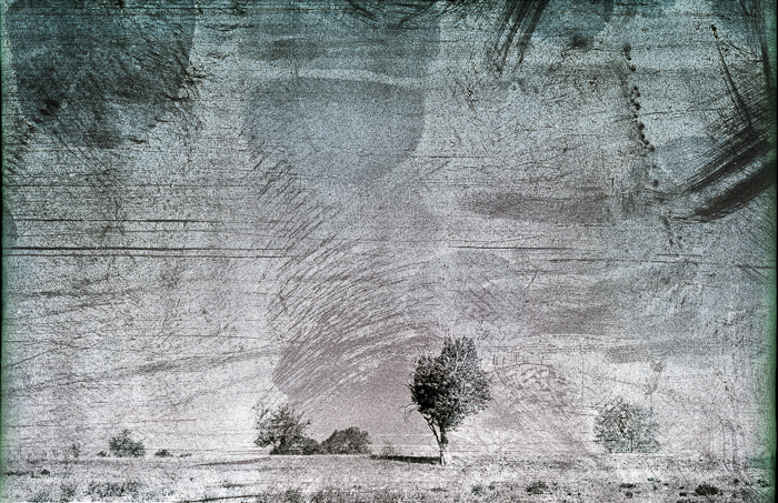 inanotherplace-simsim-detail1-2-negfile1009-0002-multiexp-aviv-yaron-photography