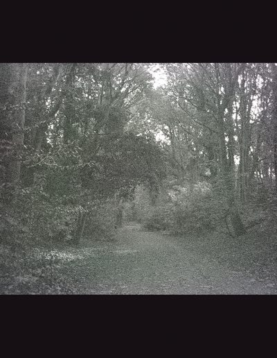 Title: Parkland Walk #1 Material : Archival Giclee Edition: limited 10 Dimensions : 75cm X 48cm