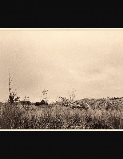 Title: Landscape #48 Material : Archival Giclee Edition: limited 10 Dimensions : TBD