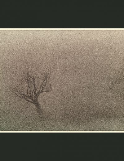 Title: Fog #9 Material : Archival Giclee Edition: limited 10 Dimensions : TBD